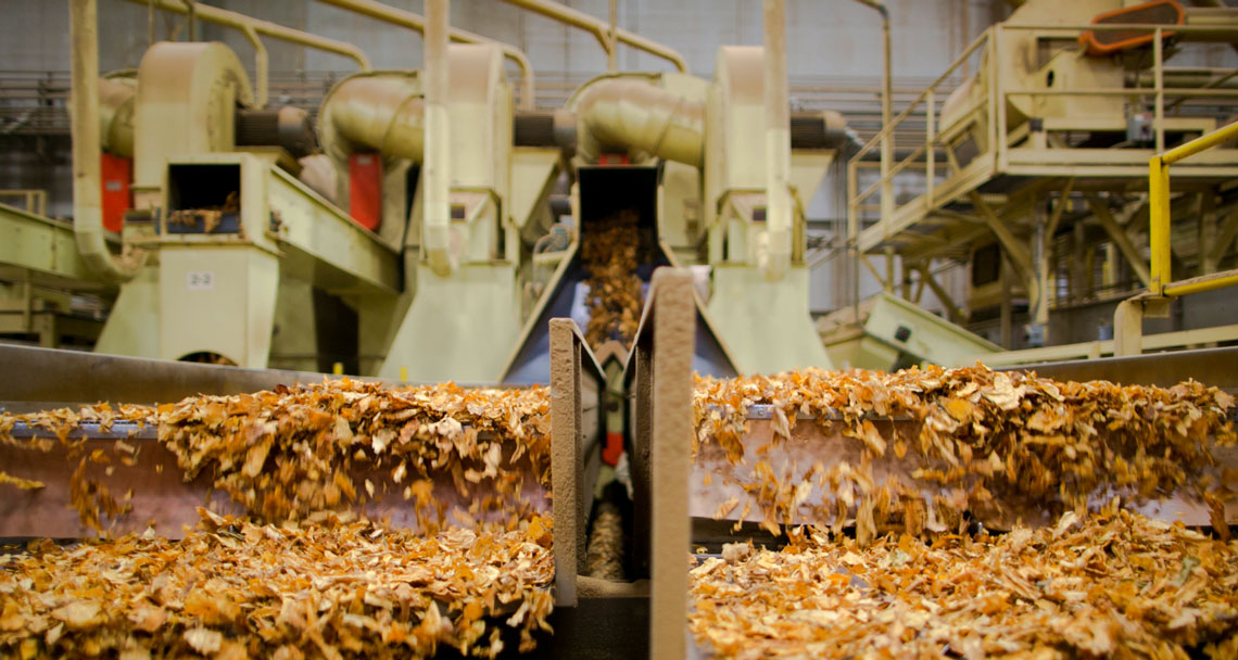 tobacco in factory