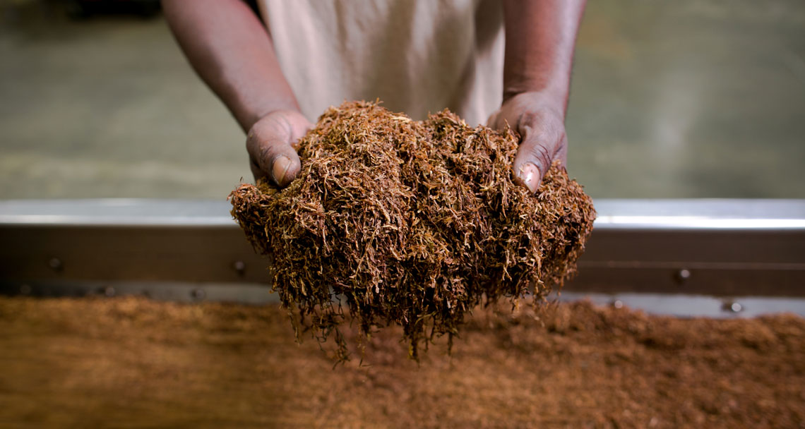 hands on tobacco
